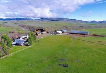 Y-3 Ranch