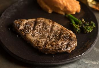 Aleph Farms 3-D bioprinted steak