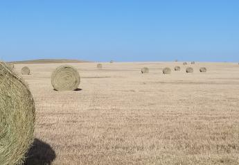 North Dakota hay field