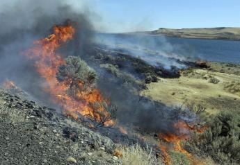Federal officials have released a plan to save sagebrush habitats in Western states that support cattle ranching, recreation and 350 wildlife species, including imperiled sage grouse. Officials say the 248-page document released this month is a paradigm shift relying on advances in technology and analytics to categorize sagebrush areas based on resistance and resilience to wildfire.