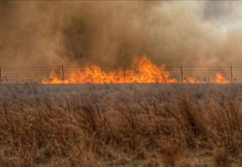 Wildfires are prompting a feed shortage.