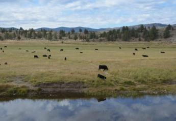 A temporary restraining order will stop Steven and Dwight Hammond from using their federal grazing permits.
