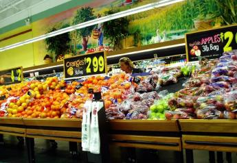 grocery_store_produce_section