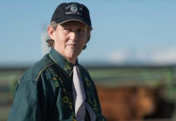 Temple Grandin, a professor of animal science at Colorado State University, is a world-renowned consultant for the livestock and meat industries, advising on humane and low-stress handling of livestock.