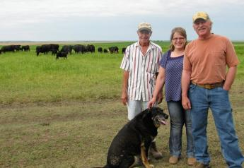 Terry, left, DenaMarie and Wayne Springer are pushing toward open-pollinating corn and direct-to-consumer beef.