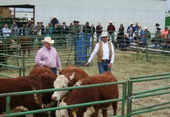 Dr. Ron Gill (left) and Curt Pate demonstrate animal-handling principles during a previous Stockmanship & Stewardship event.