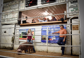 Sullivan County 4-H and FFA Youth Livestock Sale on Sept. 21, 2020, Milan, MO.