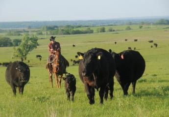 Some question OCM's support for ranchers.
