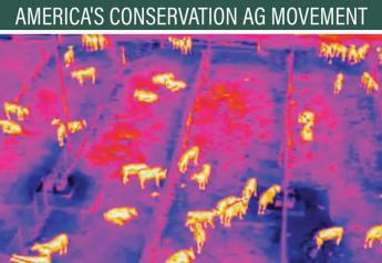 Drones with thermal imaging cameras have been buzzing over a research feedlot near Amarillo, as researchers develop test methods to identify feverish animals before they show symptoms of illness.