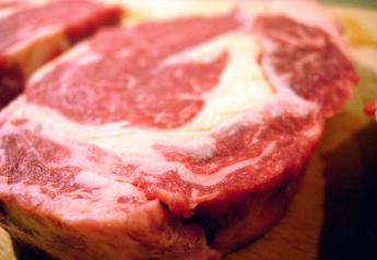 BT_FreeImages_Beef_Steak