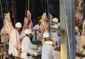 BT_USDA_Beef_Meat_Packer