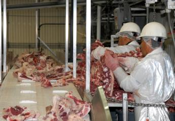 BT_USDA_Beef_Meat_Packer_3