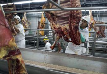 Brazil Meat Packing Plant