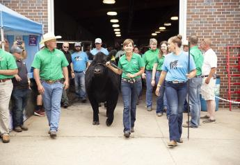 2019 Iowa Governor's Charity Steer Show