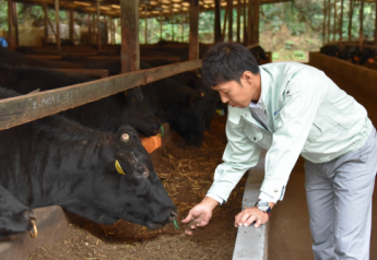 Japanese imported beef will see lower tariffs.