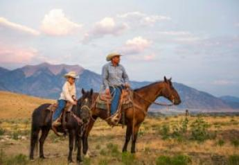 In Colorado, the average reported income from adding agritourism is $36,000 per year.