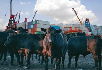 Brazilian fresh beef imports may resume