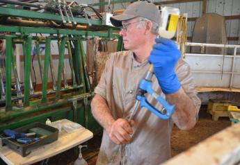 While lesions are sometimes unavoidable, there are management practices that veterinarians and cattle producers can abide by to protect animal welfare and maintain meat quality.