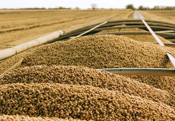 Soybeans in Cart