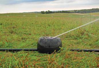 Mini Irrigation System Manages runoff