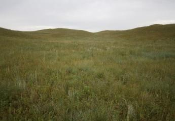 Nebraska_Rangeland_Pasture_Forage