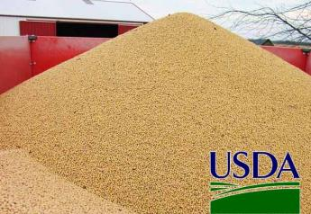 USDA-soybean-pile2