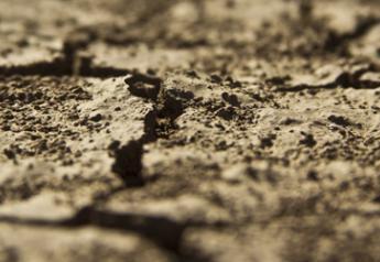 dry drought ground
