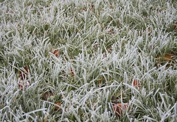 frost-7-1160051-1599x1066