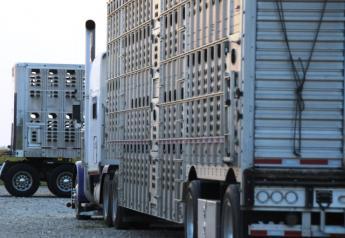 livestock_trucks-trailer_(3)