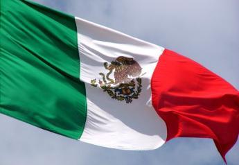 mexican-flag-1419738-640x480