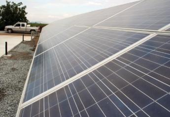 solar_panels_-_Kees_de_Jong_10-10_018