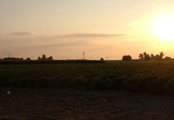 sunrise test plots weather
