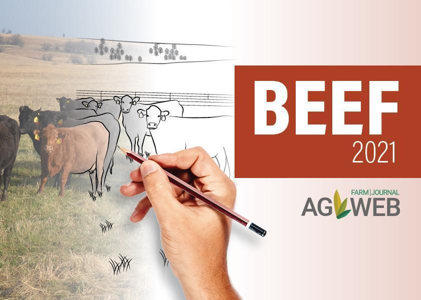 Beef outlook 2021
