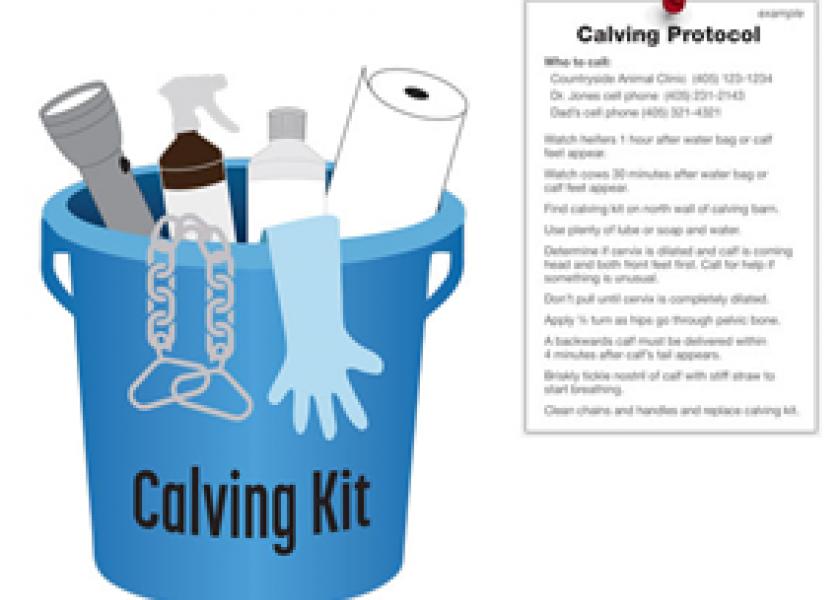 Calving kit