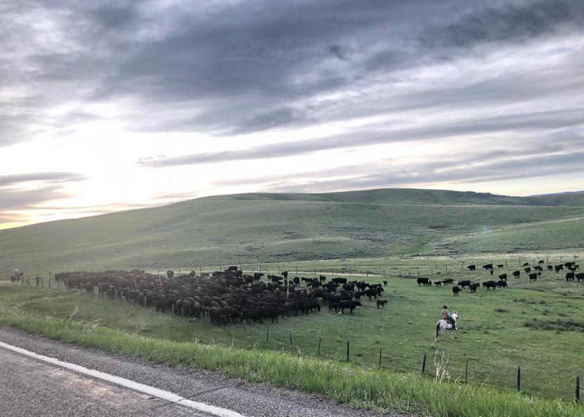 Bair Ranch, Montana