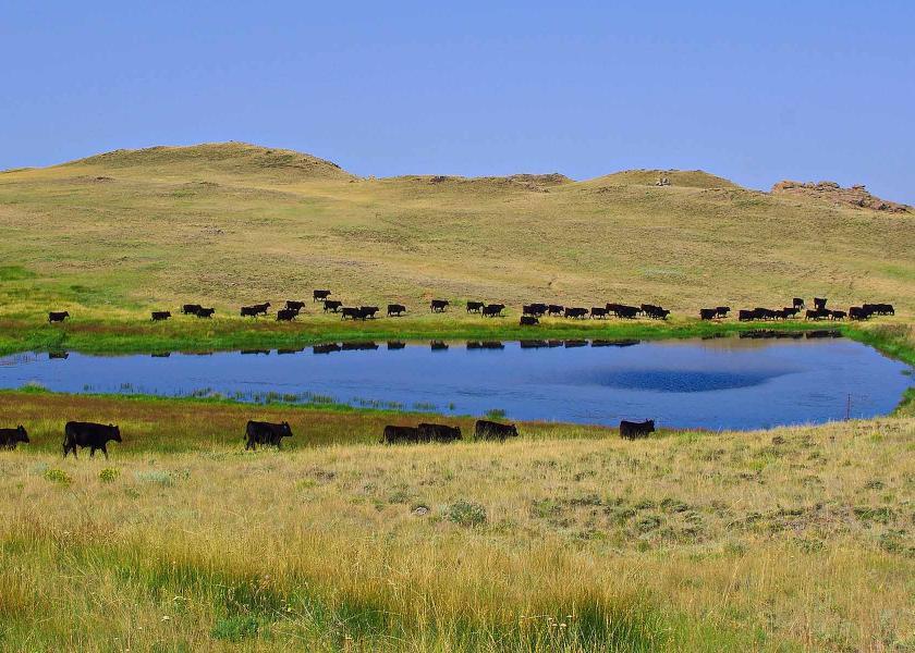 Thunder River Ranch