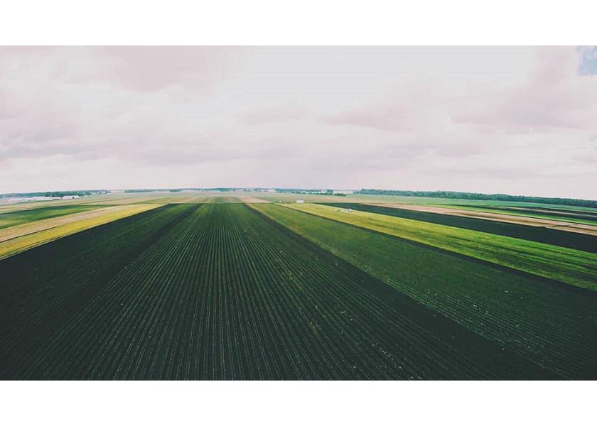 Purdue University's annual survey finds record high farmland values.