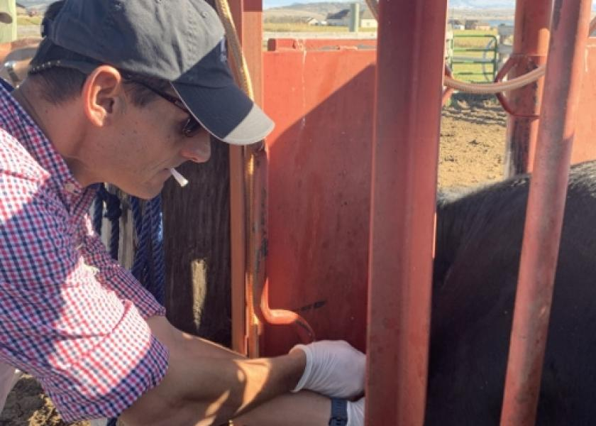 Marty Zaluski, DVM, serves as State Veterinarian with the Montana Department of Livestock.