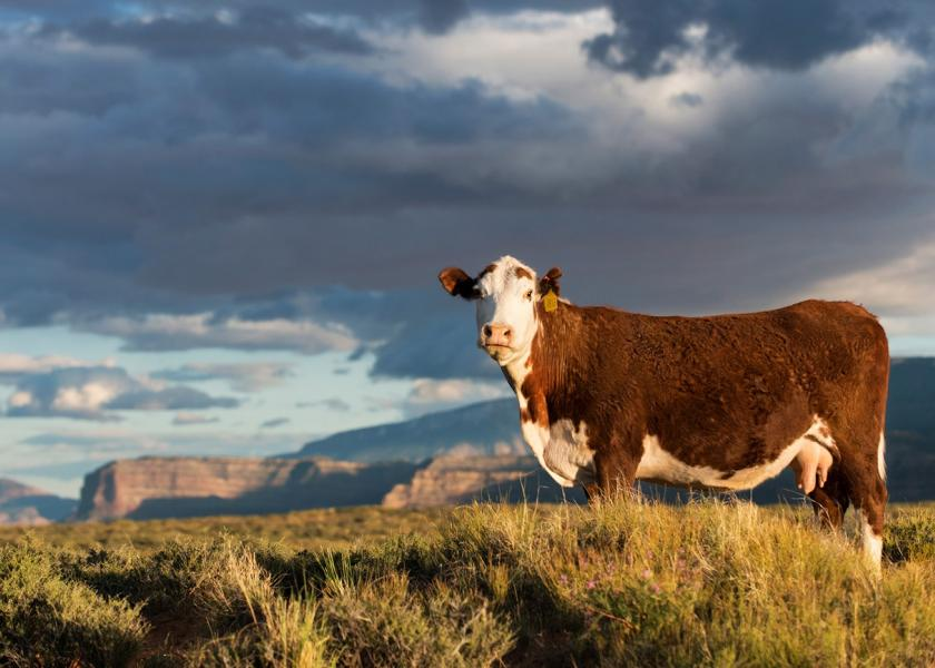 While the beef industry has seen growing demand, developments mostly driven by environmental activists still loom over the industry like a gray cloud.