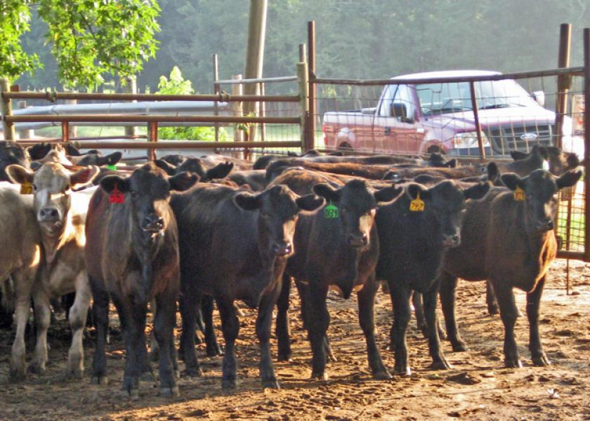 Market recovery from coronavirus impact could be lengthy