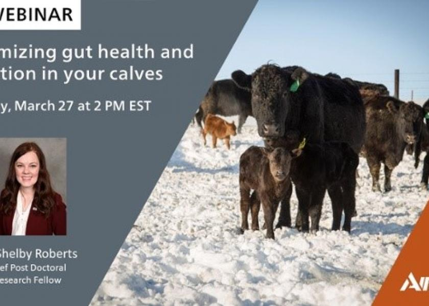 The webinar takes place on March 27 at 2:00 PM Eastern.