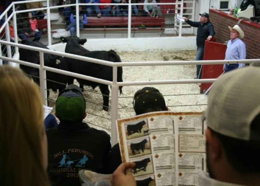 The relative importance of direct and maternal calving-ease EPDs can depend on a rancher's production system.